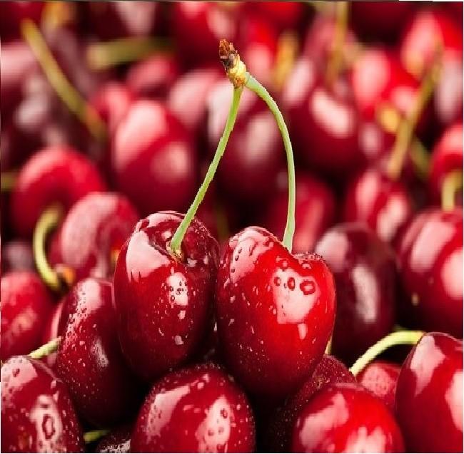 【臻美蔬果】大嘴巴櫻桃
