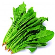 【臻美蔬果】菠菜