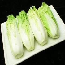 【臻美蔬果】娃娃菜