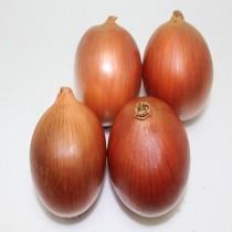 【臻美蔬果】洋蔥