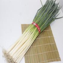 【臻美蔬果】青蔥