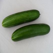 【臻美蔬果】大黃瓜