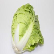 【臻美蔬果】大白菜