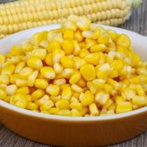 【臻美蔬果】玉米粒